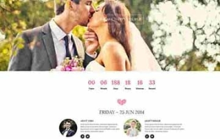wedding website jakarta